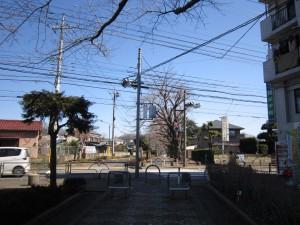 武蔵野の道・多摩湖コース|くまさんとチャリ