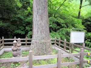 小沢峠への曲がり角|くまさんとチャリ