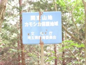 林道・広河原逆川線(有間峠)