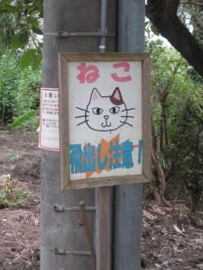 吉見百穴&荒川CR2015-09-05 (116)
