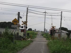 吉見百穴&荒川CR2015-09-05 (124)
